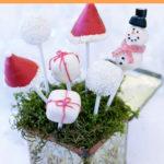 Hapjes voor het kerstdiner op school