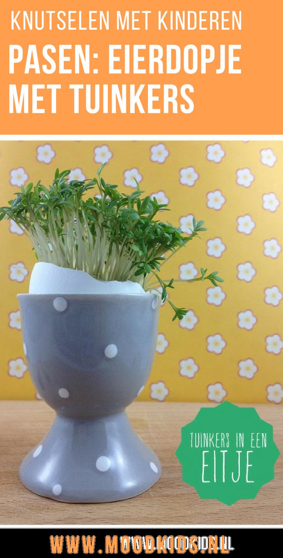Ieder jaar maken we een week of twee voor Pasen onze tuinkers eitjes zodat ze met het Paasontbijt in volle bloei staan. Het is heel eenvoudig en leuk om samen te maken met kinderen.