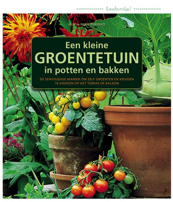 een kleine groententuin in potten en bakken, moestuinieren voor kinderen