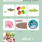 #366DailyLoves week 1