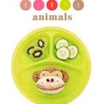Bento maken – dieren in de lunchtrommel