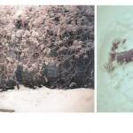 WKND – Inspiratie – Sneeuwpret!