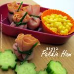 BENTO Pakkie Ham