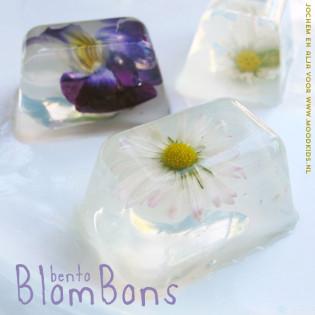 BENTO Blombons
