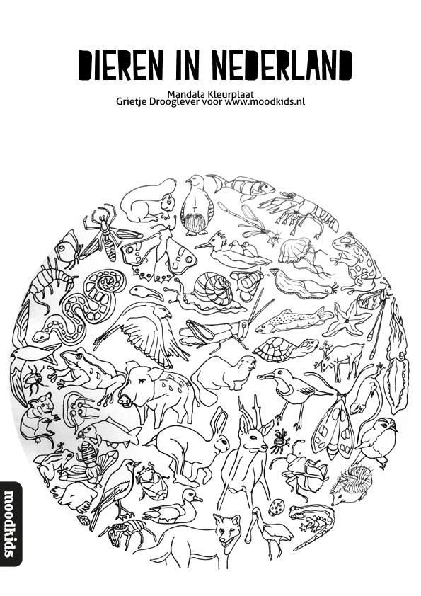 Download deze gratis mandala met Nederlanse dieren. Staat garant voor het nodige kleurplezier!
