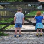 De 7 leukste kinderboerderijen van België