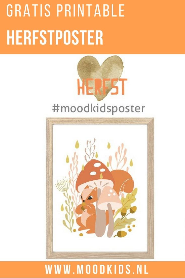 Speciaal voor dit kleurrijke seizoen hebben we een gratis poster herfst van Roodborstje. Download, print en hang hem op. Deze verdient wel een mooi plekje!