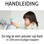Handleiding : Zo leg je een peuter op bed in 100 eenvoudige stappen