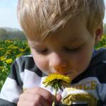 Lente is… buiten spelen. 5 leuke tips van Scharrelkids