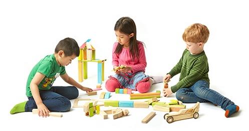 speelgoedtrend tegu