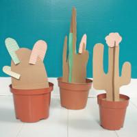 Deze diy cactus prikt niet!