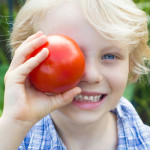 De Tomatenfabriek zoekt jou! Kom solliciteren