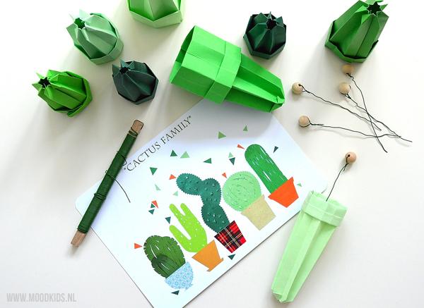 cactus van papier