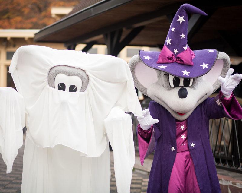 Waar Wordt Halloween Gevierd.Halloween 2016 Activiteiten Voor Kinderen Moodkids