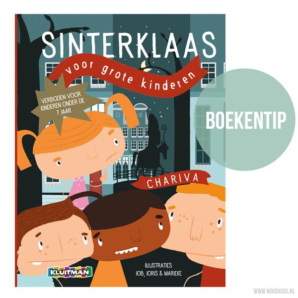 boekentip sinterklaas voor grote kinderen, sinterklaas geheim