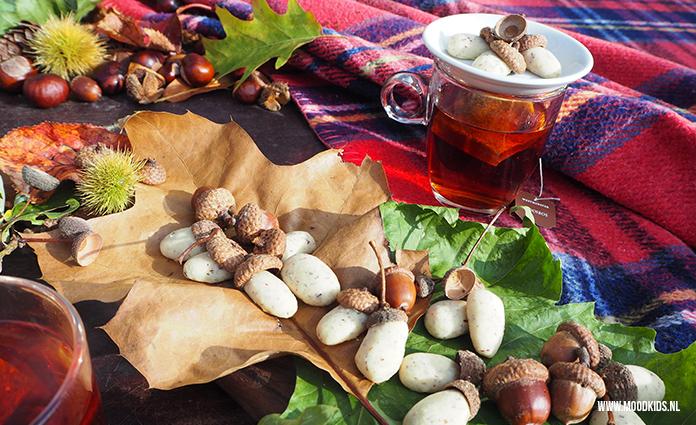 Herfst vraagt natuurlijk om herfstkoekjes. Maak van deeg eikelkoekjes en pimp ze met echte eikelhoedjes. Leuk als traktatie of voor een herfst hightea. Het recept voor deze koekjes vind je hier.