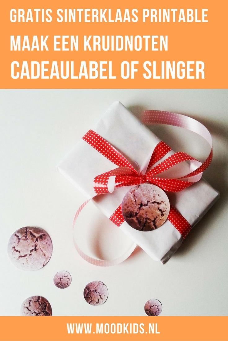 Maak je huis 5 december proof! Met deze papieren kruidnoten maak je een leuke Sinterklaas slinger, cadeaulabel of confetti. Je download deze leuke gratis Sinterklaas printable hier.