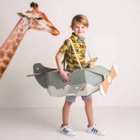 Mister Tody: super leuk speelgoed van karton