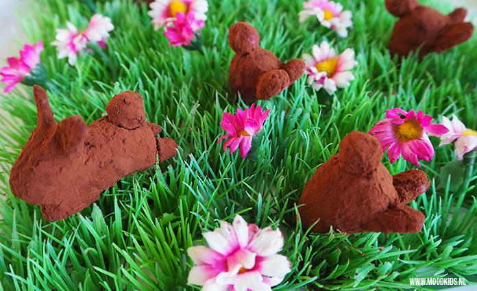 Je ziet ze nog nét wegkruipen in de grond. Deze frambozen paashaasjes weten dat ze anders worden opgegeten. Jasmijn deelt haar gezonde paashaas recept.