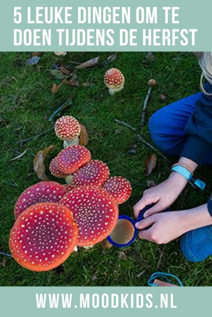 We zetten 5 herfstactiviteiten voor kinderen op rij #herfst #buitenspelen
