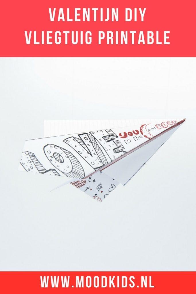 Met #Valentijnsdag voor de deur bedacht Roelina een leuk vliegtuigje. Een Valentijn vliegtuigje waar je een speciale, persoonlijke boodschap voor jouw Valentijn op kunt schrijven. Je kunt hier 2 versies gratis downloaden. #gratis #printable #free #valentine