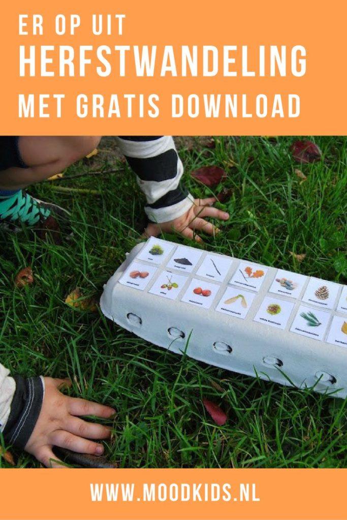 Wandelen met kinderen in de herfst wordt extra leuk met deze printable