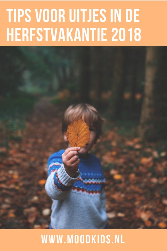 De leukste uitjes en activiteiten voor de kinderen in de herfstvakantie 2018. Je leest ze hier. #herfstvakantie #uitjesmetkinderen #uitjes