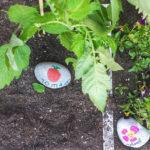 Plantenlabels van steen voor in de moestuin
